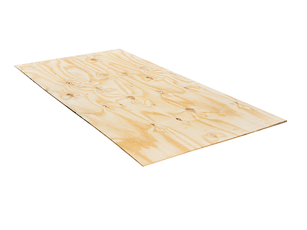 Boardic Spruce plywood
